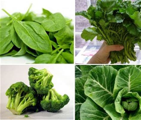 different type of leafy vegetable with name best photos of types of leafy vegetables different vegetables green leafy vegetables pictures