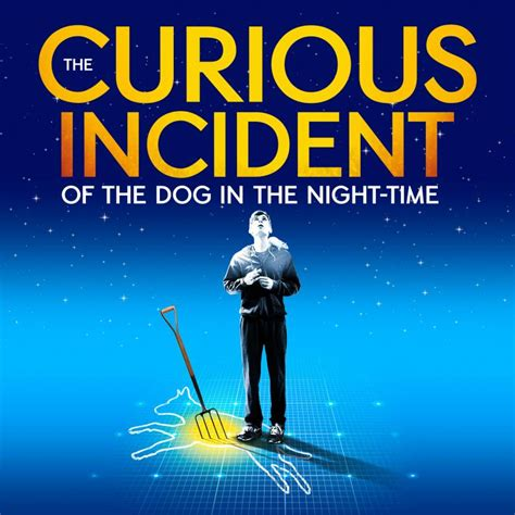 the curious incident of the in the nighttime book the curious incident of the in the time at the gielgud theatre