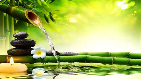 hours sleep  healing zen relaxation meditation spa study soothing   youtube