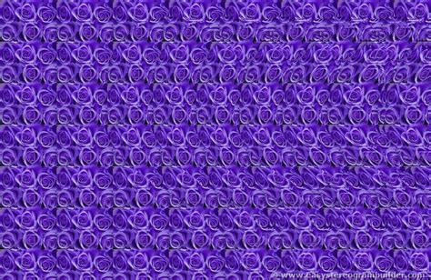 magic eye pattern close reading and the magic eye a quick thought