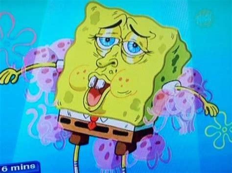 7 Reasons I Still Spongebob by 21 Best Images About Spongebob Squarepants On