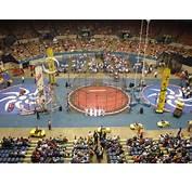 Image Gallery Shrine Circus 2013
