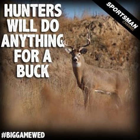 hunting meme buck whitetaildeer sportsman funnies