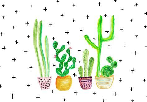 cactus trend current trends cacti