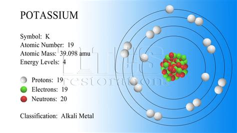 diagram of potassium atom potassium atom 3d model www pixshark images