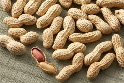alimenti contengono lievito gli alimenti contengono fosforo notizie it