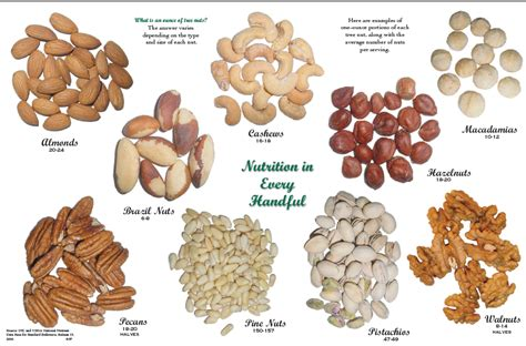 youre nuts if youre not eating nuts nutrition and you boston com