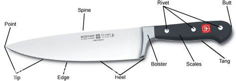 Different Types Of Kitchen Knives knife facts