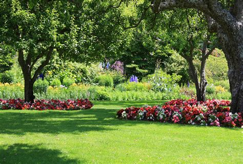 organic lawn care helps preserve the environment for