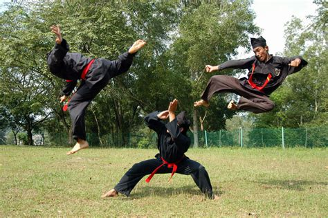 martial arts silat harimau the deadly beauty martial art of the month silat kung fu kingdom