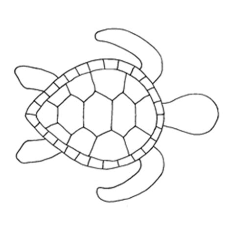 turtle shell template turtle template roblox