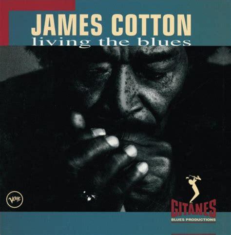Cd Living Blues birds modern songs cd covers