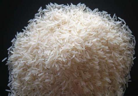 Rice L by Pusa Basmati Rice Manufacturer Infirozpur Punjab India By
