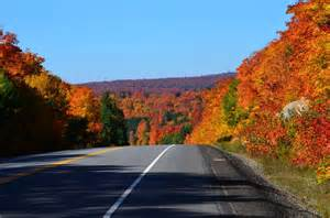 In Fall fall colors in algonquin park fall 2014 pic 16 jpg
