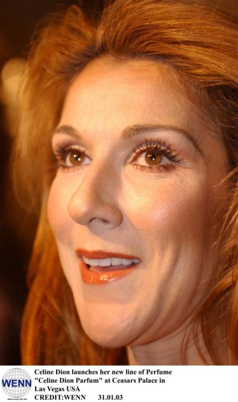 biography celine dion english celine dion photo who2