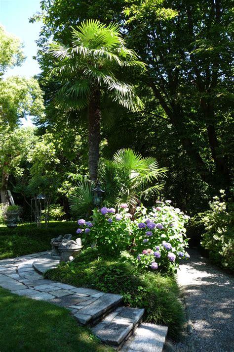 giardini antichi le solite piante insolite 187 archive 187 le palme nel