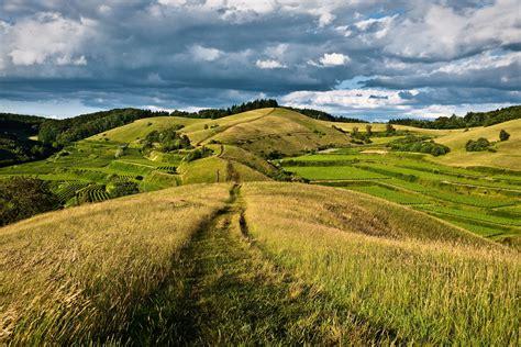 landscaping hills hills forest road landscape wallpaper 4000x2667 281909