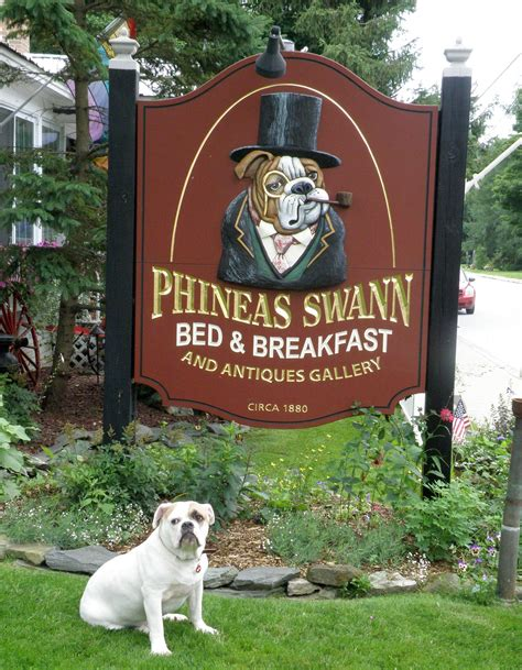 dog friendly bed and breakfast dog friendly bed and breakfast korrectkritterscom dog beds