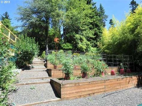 hillside vegetable garden outdoor landscaping pinterest gardens vegetables and vegetable