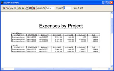 project expense report template print reports employee expense organizer