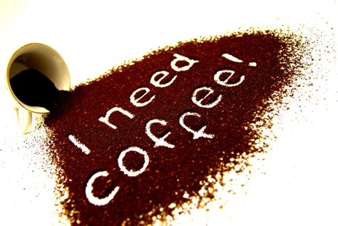 I Need Coffee i need coffee quotes quotesgram