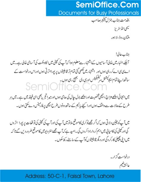 application in urdu format free