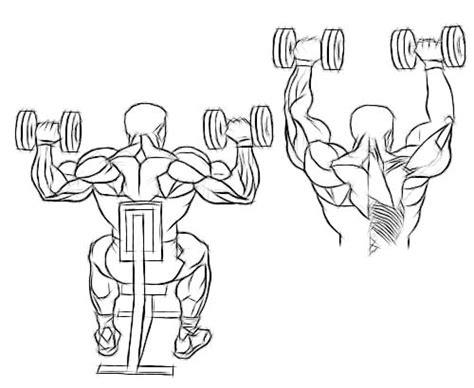 shoulder press diagram dumbbell overhead press international free