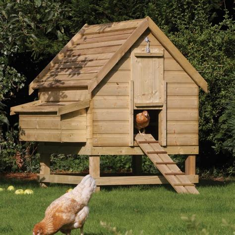 Large Chicken Shed by Large Chicken Coop Hen House Fsc Timber Easy Egg Collection