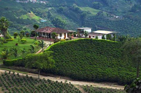 La Zona Cafetera Colombia | eje cafetero zona cafetera valle del cauca department