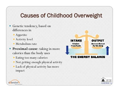 10 Causes Of Obesity by Childhood Obesity Fr Conference