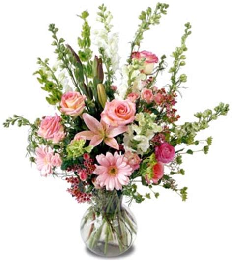 Aspirin In Flower Vases by Us 15 00