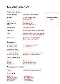 Lebenslauf Vorlage Schweiz Word Gratis Muster Lebenslauf Word Muster Lebenslauf Lehrstelle