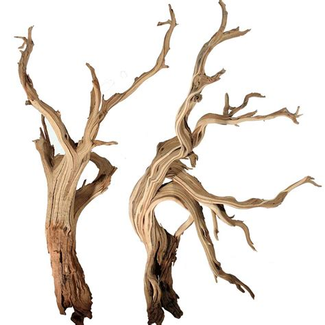 decorative driftwood branches mountain driftwood branches 10 quot up to 96 quot