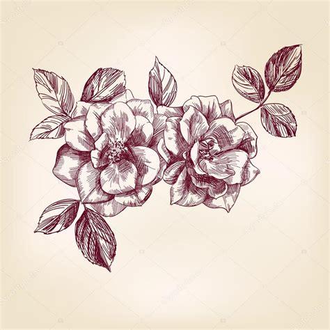 imagenes de flores dibujadas a mano rosas dibujadas a mano archivo im 225 genes vectoriales