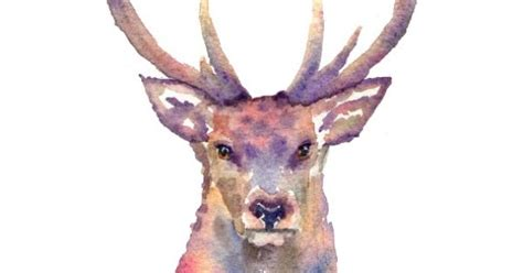 Galaxy Rainbow Deer stag in watercolour stags inspiration watercolour tattoos and