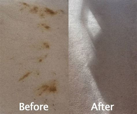 how to get stains out of carpet how to get stains out of rugs roselawnlutheran