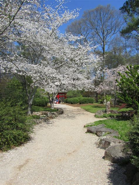 Botanical Gardens Birmingham Alabama 19 Best Images About Birmingham Botanical Gardens On Gardens Alabama And Different