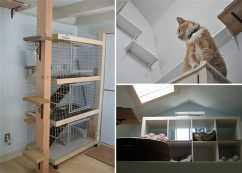 indoor cat room ideas 77 best images about diy for your pets on pools houses and diy toys