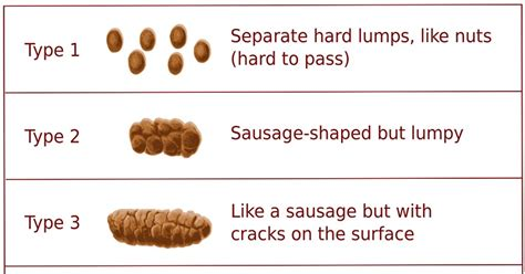 Bristol Stool Chart Type 6 Causes by Monash Low Fodmap Diet Let S Talk Number Twos