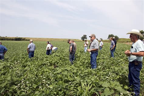 farmer s midwest farmers school themselves on soil health to revive