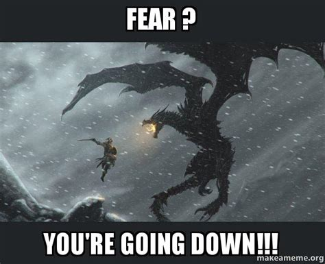 Going Down Meme - fear you re going down skyrim dragon slaying make