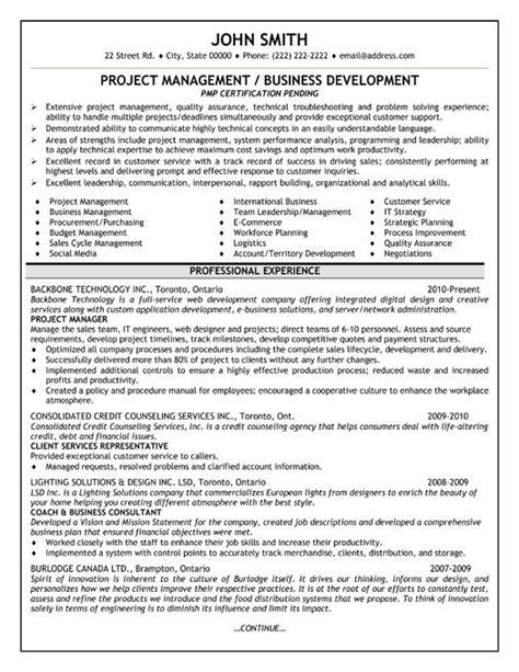 Sle Resume For Project Manager It Software India