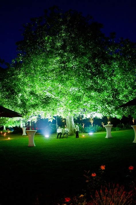 landscape lighting exles great exle of uplighting a tree so simple but so outdoor design outdoor rooms