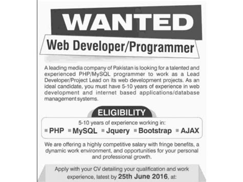 web developer programmer required   company