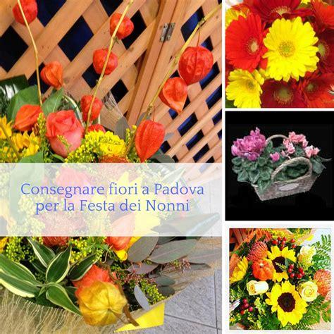 consegnare fiori consegnare fiori a per la festa dei nonni idee