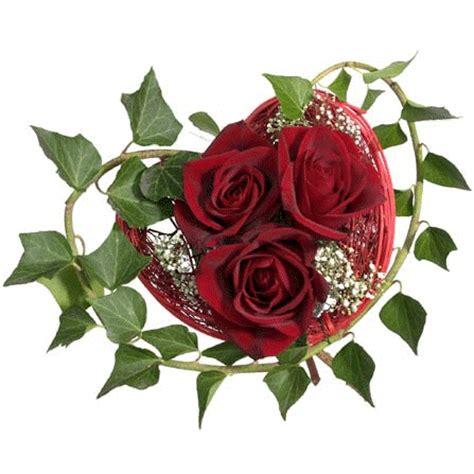 imagenes de rosas guindas imagenes de flores y rosas con movimiento imagui
