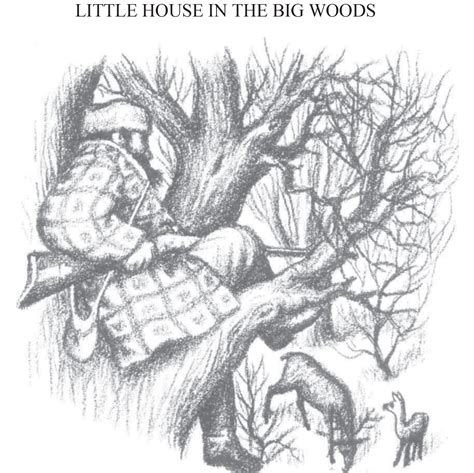 little house in the big woods beautiful little house in the big woods collection home gallery image and wallpaper