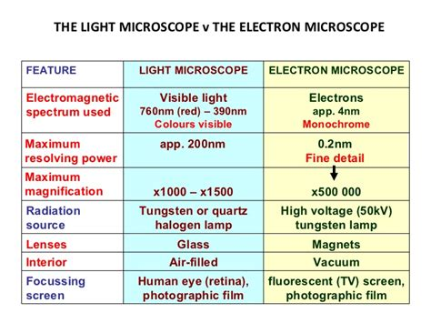 Difference Between Light Microscope And Electron Microscope by Electron Microscope
