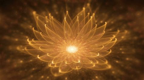 lotus water enlightenment or meditation and universe radiant orange lotus with rays of light water