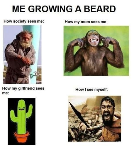 Funny Beard Memes - me growing a beard funlexia funny pictures